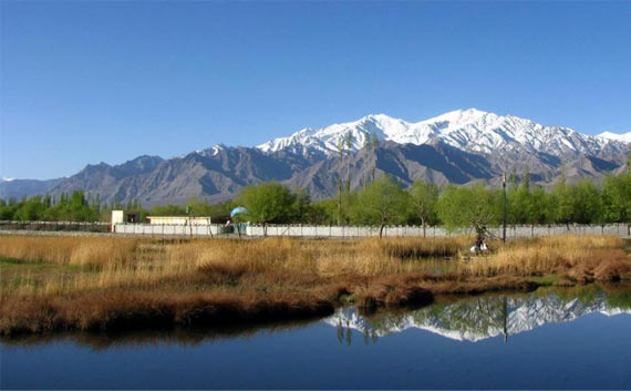 kashmir honeymoon tour package north india