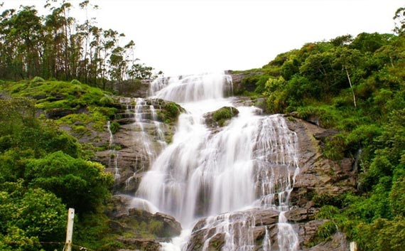 kerala hill station tour package south india